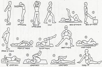 Tahapan peregangan sebelum melakukan aktivitas inti olahraga